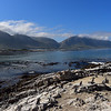 Stoney Point Penguin Reserve