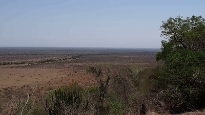 Looking East into the Kruger
