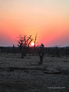 Sunset over the Mashatu Game Reserve