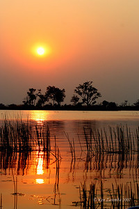Sunset over the Okavango Delta, Moremi Game Reserve near the Xakanaxa Camp