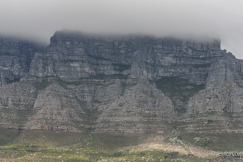 Table Cloth on Top of Table Mountain