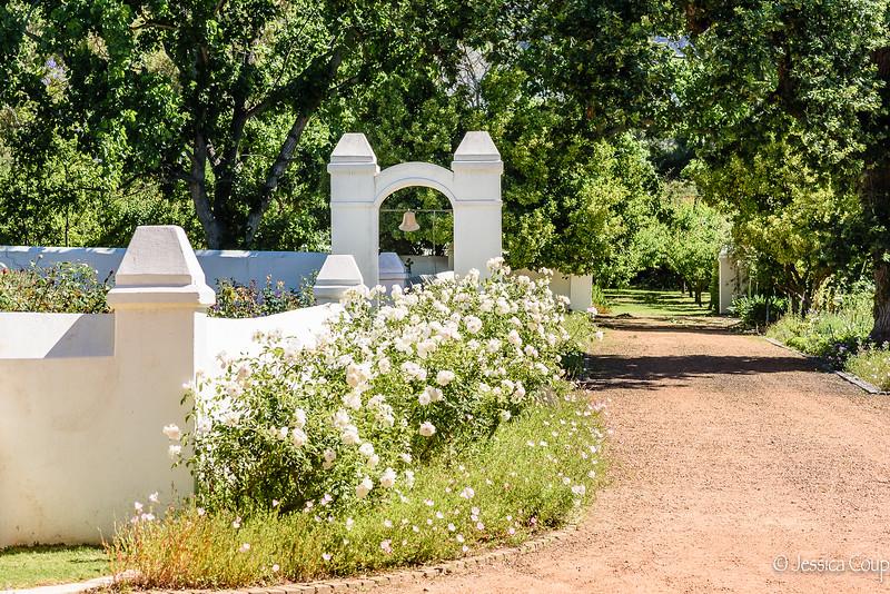 Driveway at Anthony Rupert Wine Estate