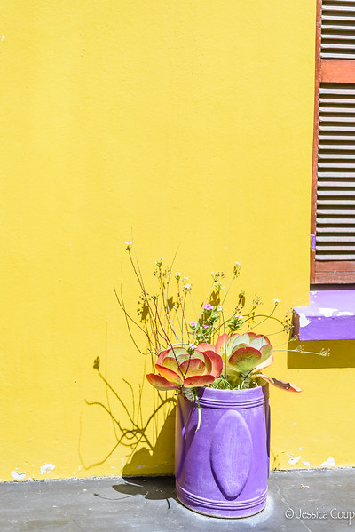 Colorful BoKaap
