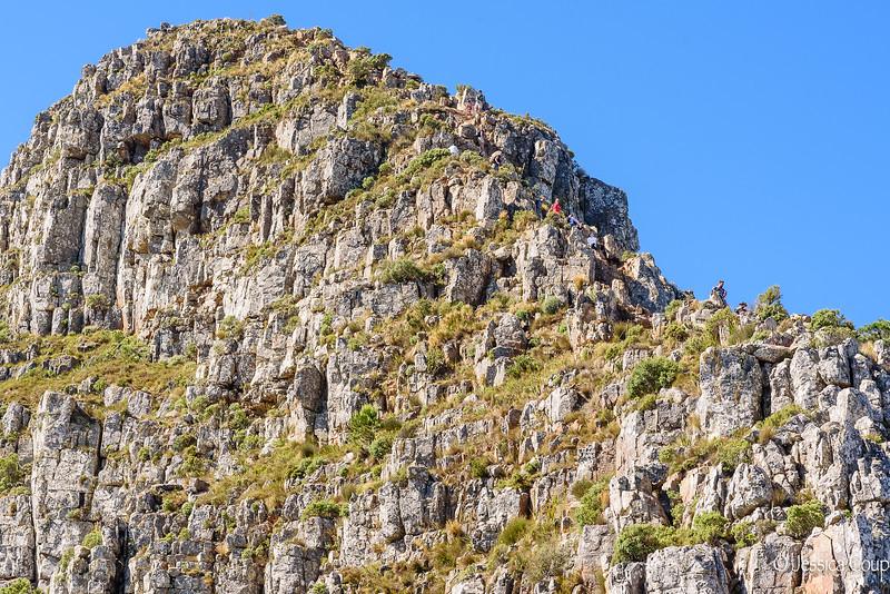 Hiking Lions Head