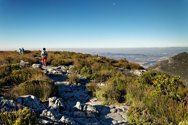 Walking track on Table Mountain