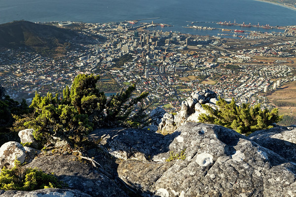 Overlooking Cape Town city from Table Mountain