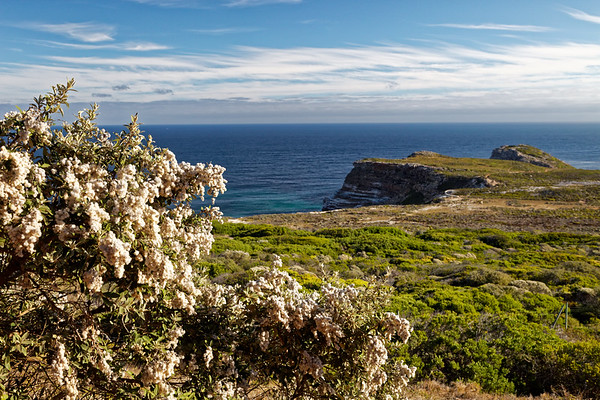 Cape Point, Table Mountain National Park