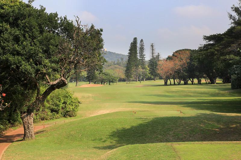 DurbanCC_06Tee_7803