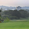 DurbanCC_03TeeMonkeyPano_7924