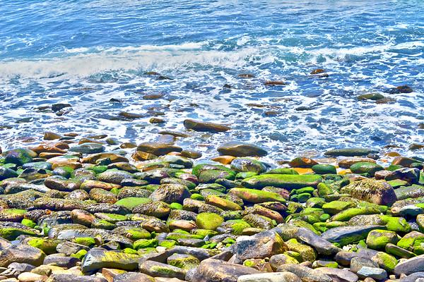 slimy rocks