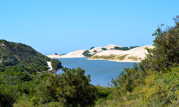 Dunes along the Sundays river mouth