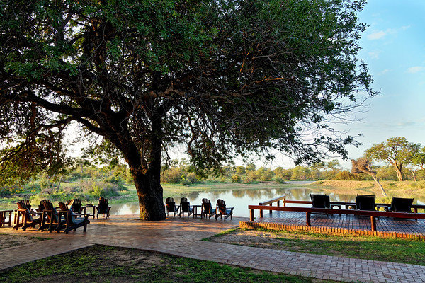 Gomo Gomo Game Lodge, pool area by the waterhole, Klaserie Private Reserve, Greater Kruger National Park