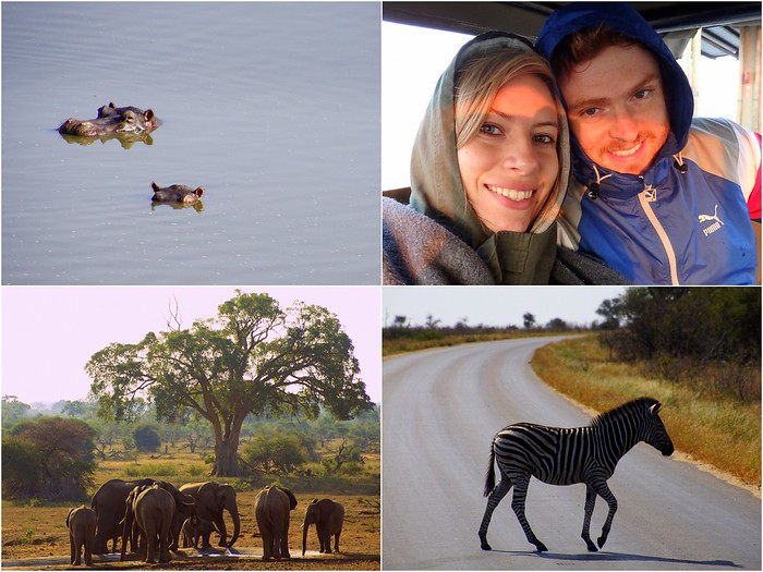 Safari in Kruger National Park with Selous Tours