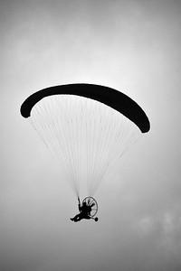 Gliding sillouette