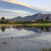 PearlValley_08AfarDucks_0630