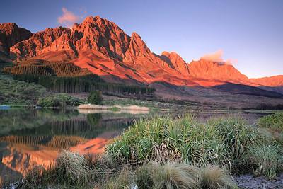 Pieke, Stellenbosch