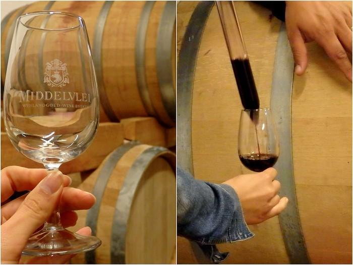 Middlevlei Wine Tour in Stellenbosch