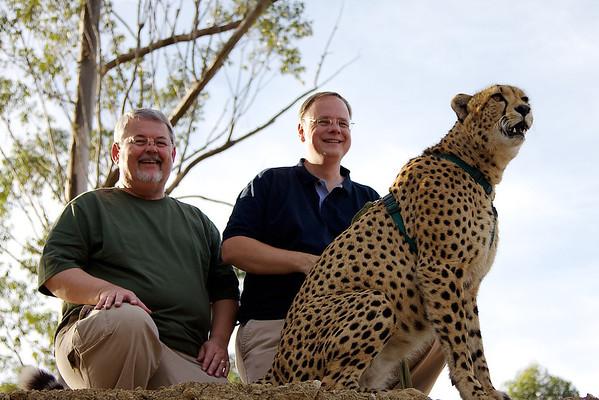 Tenikwa Wildlife Center Cheetah Encounter