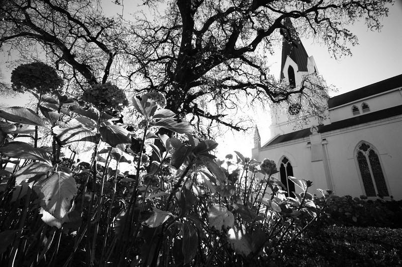 Moederkerk, Stellenbosch 2010