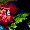 379 Cango Caves, Oudtshoorn
