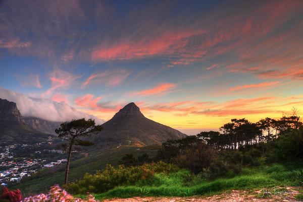Cape Town  2014 Adventure