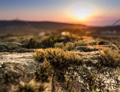 UmuziStock_South African _ Landscapes_Home_108