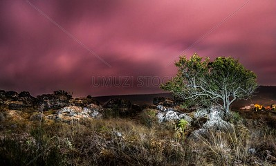 UmuziStock_South African _ Landscapes_Home_111