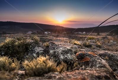 UmuziStock_South African _ Landscapes_Home_100
