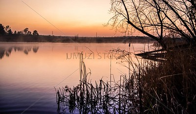 UmuziStock_South African _ Landscapes_Home_103
