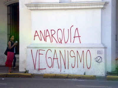 Graffiti.  Something about anarchy and veganism?