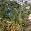 020 Parque Metropolitano