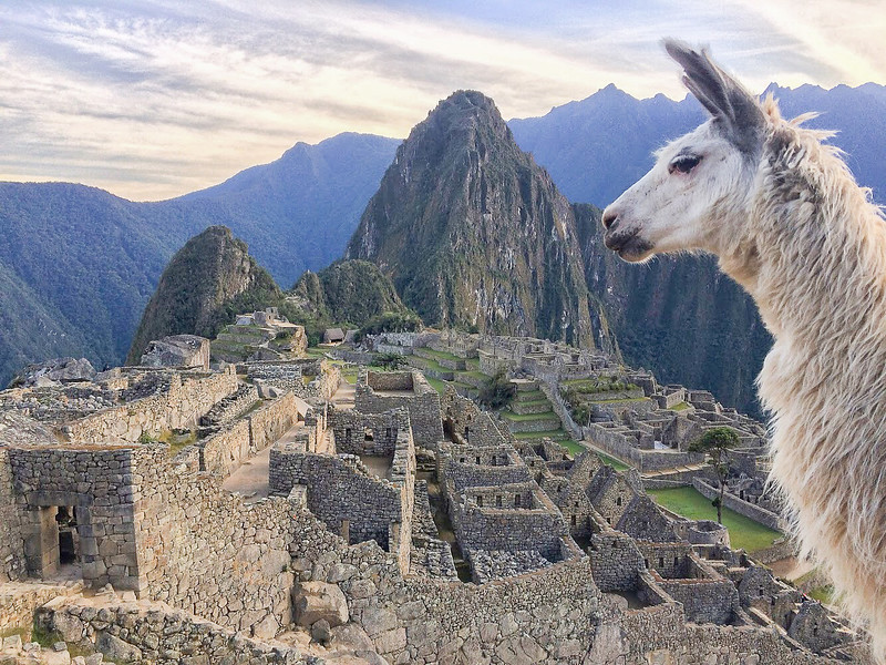 DIscover the top things to do in Machu Picchu Peru