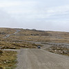 Discover Penguins at Volunteer Point Falkland Islands