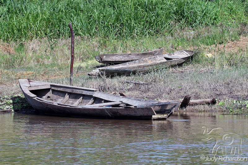 Canoes on river bank
