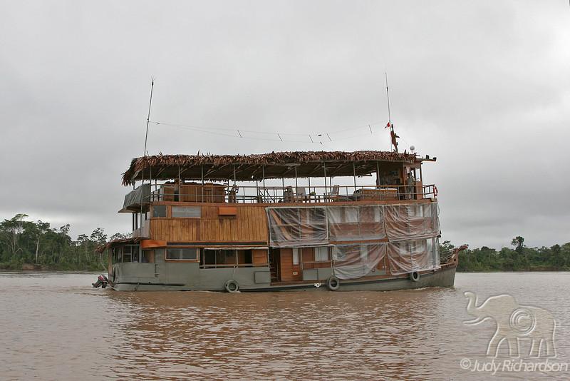 Delfin on the Amazon River