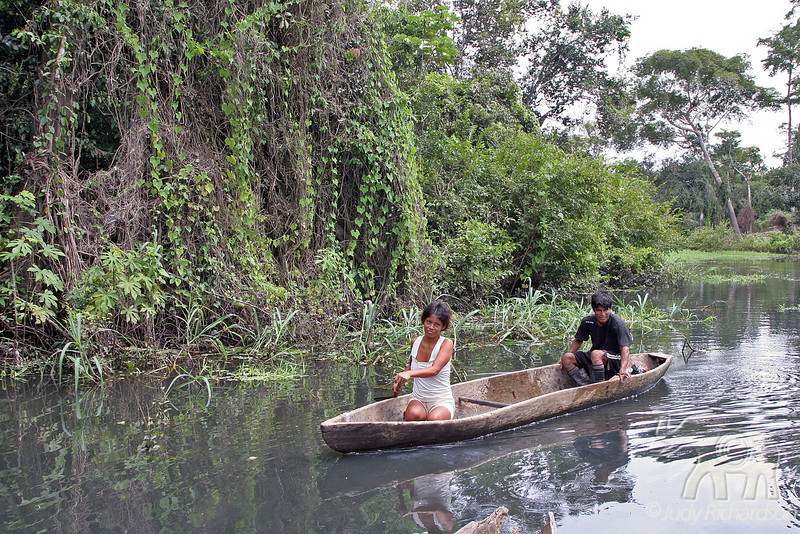 Travel in a canoe in a tributary off the Amazon River