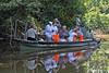 Fishing for Piranha in tributary