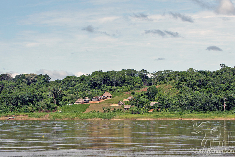 Modern Amazon Village