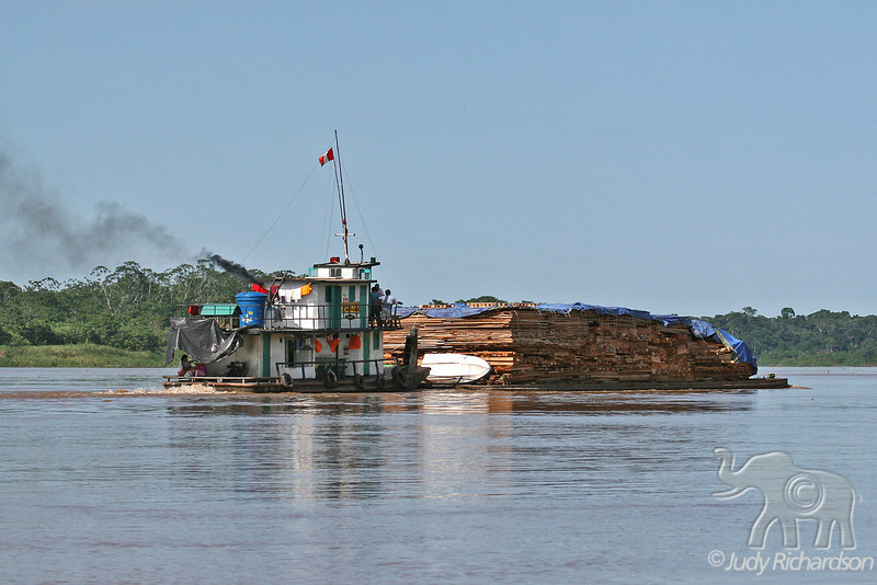 Lumber being transported on the Amazon