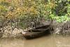 Canoe on the Amazon