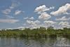Scenery on the Amazon