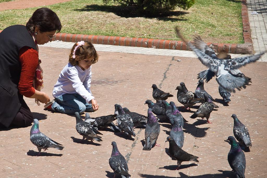 Plaza de Mayo - Buenos Aires