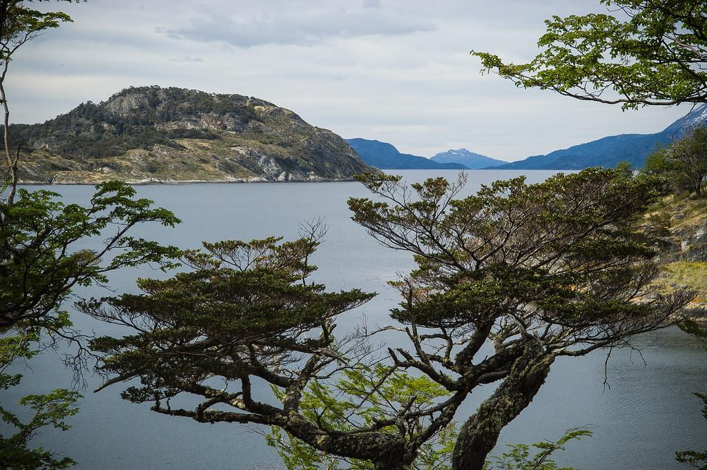 Cove in Parque Nacional - Tierra del Fuego, Argentina