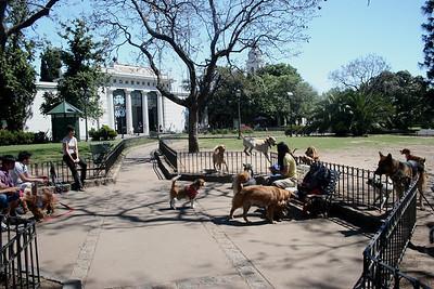 Dog walkers taking a break