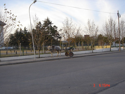 Horse and carriage - Argentina