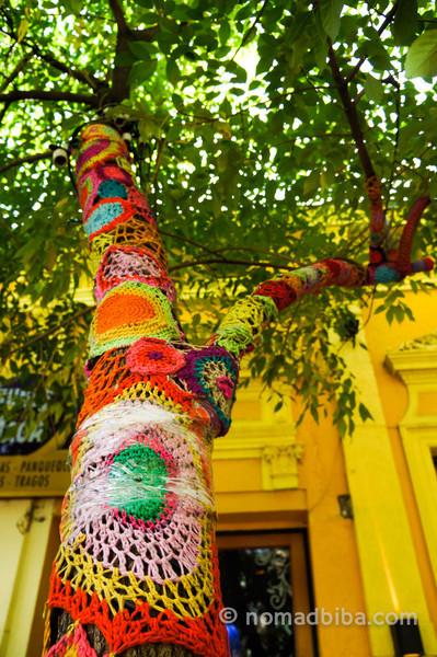 Tree yarn bombing in Palermo