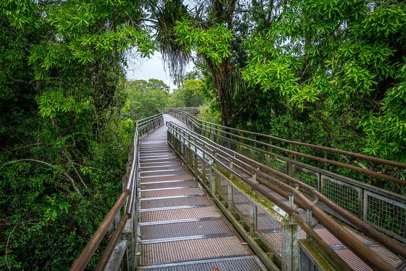 Hiking in Iguazu National Park