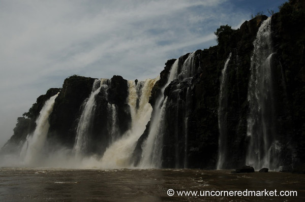 Collection of Falls - Iguazu Falls