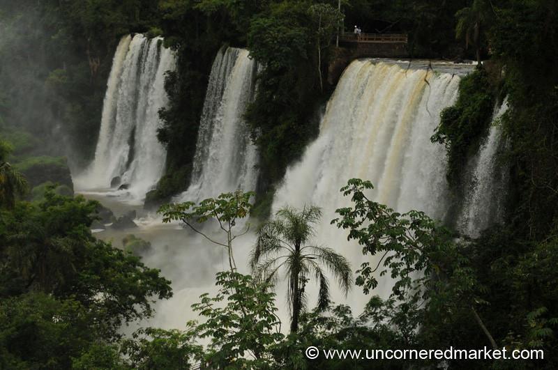 Lush - Iguazu Falls, Argentina
