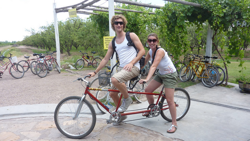 Bike tour the vineyards